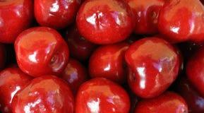 Ripe cherries Stock Image