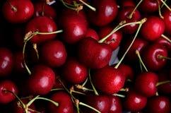 Ripe cherries with dew closeup Stock Photos