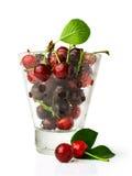Ripe cherries in glass Stock Photography