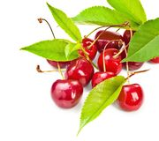 Ripe cherries with green leaves Royalty Free Stock Photography