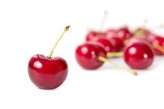 Ripe cherries royalty free stock photos