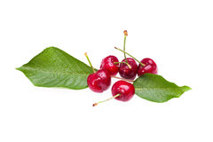 Ripe Cherries Over White Background Royalty Free Stock Images