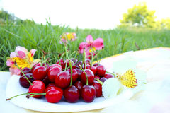 Ripe cherries on a  picnic. Ripe cherries on a summer picnic Stock Photo