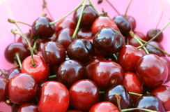 Ripe cherries on a pink background closeup Royalty Free Stock Photography