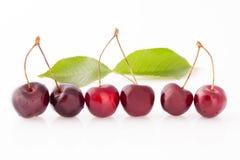 Ripe Cherries In Row Stock Images