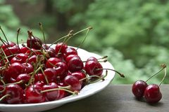 Ripe cherries on the table Stock Images