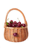 Ripe cherries in a wattled basket Stock Photography