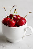 Ripe cherries in white cup Royalty Free Stock Photos