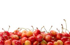 Ripe cherry Royalty Free Stock Photo