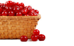 Ripe cherry in basket Royalty Free Stock Images
