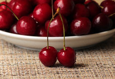 Ripe cherry berries on a branch Royalty Free Stock Photography