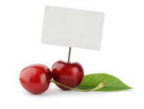 Ripe cherry berries with price tag Royalty Free Stock Images