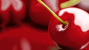 Ripe cherry. Royalty Free Stock Photography