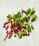 Ripe cherry branch with berries and green leaves on wooden background Stock Photo
