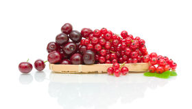 Ripe cherry and currant on a white background Royalty Free Stock Images
