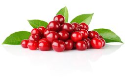 Ripe cherry with green leaves Royalty Free Stock Image