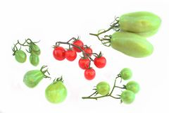 Ripe Cherry  and green unripe tomatoes Royalty Free Stock Images