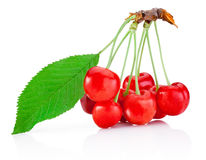 Ripe cherry with leaf isolated on white background royalty free stock images