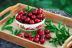 Ripe cherry with mint Stock Photo