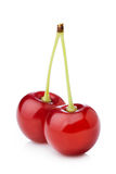 Ripe cherry Stock Images