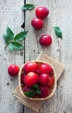 Ripe cherry-plums in the basket Stock Image