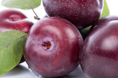 Ripe cherry plums Royalty Free Stock Image