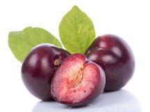 Ripe cherry plums Stock Photos