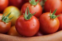 Ripe Cherry tomato close up. Stock Photography