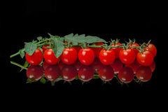 Ripe cherry tomato with leaves Royalty Free Stock Image