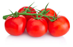 Ripe Cherry tomatoes on branch isolated on white background Royalty Free Stock Image