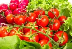 Ripe cherry tomatoes Royalty Free Stock Photos