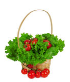Ripe cherry tomatoes with lettuce in a basket Royalty Free Stock Images
