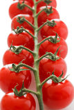 Ripe cherry tomatoes on the vine Stock Images