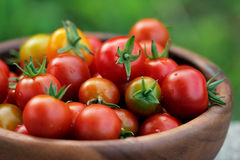Ripe Cherry tomatoes in a wooden plate Royalty Free Stock Photography