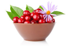 Ripe cherry in tureen with green leaves and flower Stock Photos