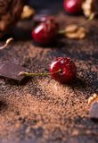 Ripe cherry, walnuts and chocolate chunks Royalty Free Stock Images