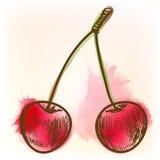 Ripe cherry, watercolor painting Stock Photo