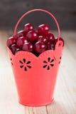 Ripe cherry Royalty Free Stock Image