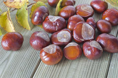 Ripe chestnuts. And autumn leaves on the table Royalty Free Stock Photos