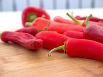 Ripe chili peppers Stock Photos