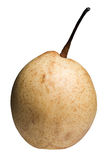 Ripe Chinese pear Royalty Free Stock Image