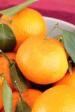 Ripe clementines in the bowl Stock Photography