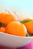 Ripe clementines in the bowl, close up Royalty Free Stock Image