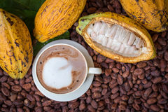 Ripe cocoa pod and beans setup on rustic wooden background.  stock photography