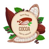 Ripe Cocoa pod fruit, beans and leaves around circle badge with text natural foods premium product. Concept for logo,. Ripe Cocoa pod fruit, beans and leaves stock illustration