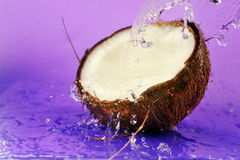 Ripe coconut Stock Photo