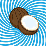 Ripe coconut Royalty Free Stock Photography