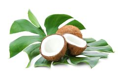 Ripe coconuts with leaf. On white background Royalty Free Stock Photography