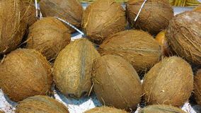 Ripe coconuts in market as background Royalty Free Stock Photography