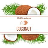 Ripe coconuts and palm leaves with text 100 percent natural. whole and cracked Stock Images